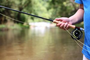 The 12 Best Beginner Fly Rods: Start Fly Fishing Now!