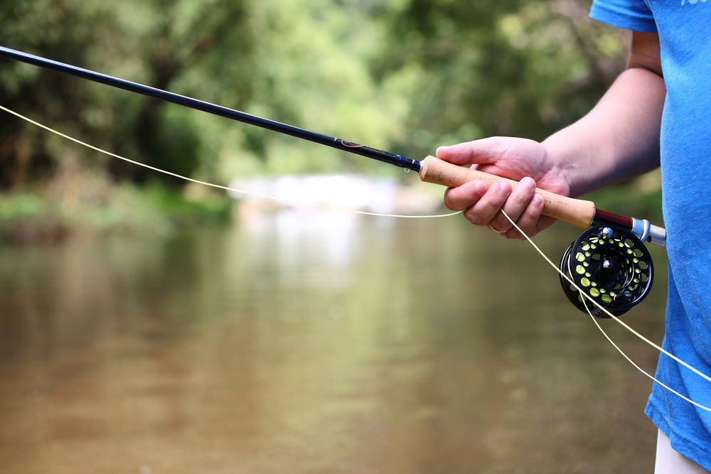 Best Beginner Fly Rods