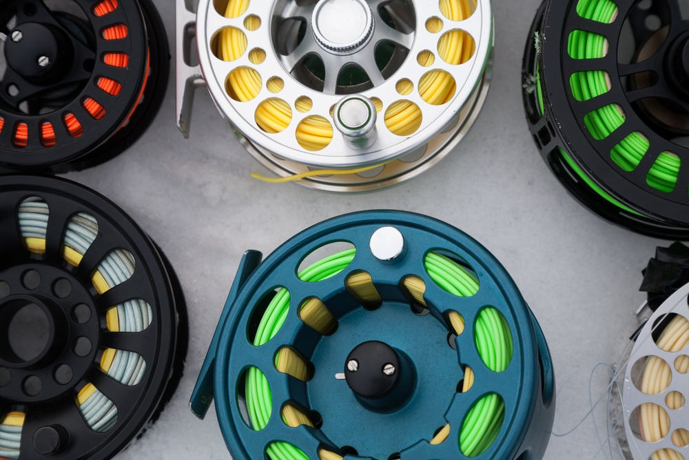Best Fly Fishing Lines