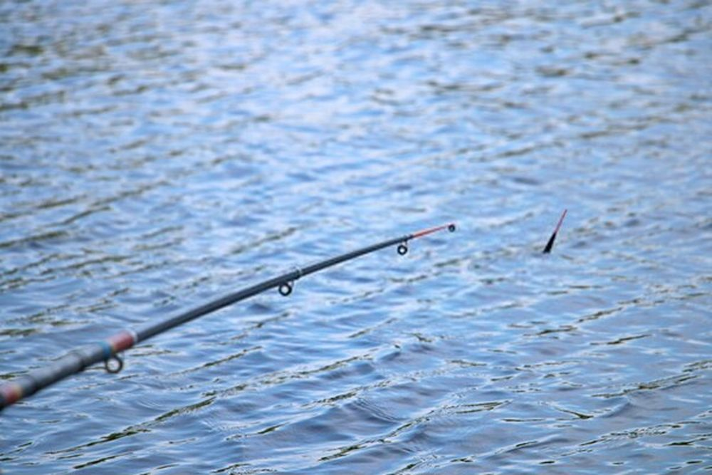 how to choose the best telescopic fishing rods