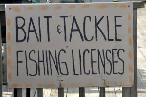 What Is The Fine for Fishing Without a License? Rules and Regulations You Should Know
