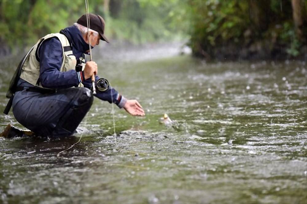 trout fishing in the rain