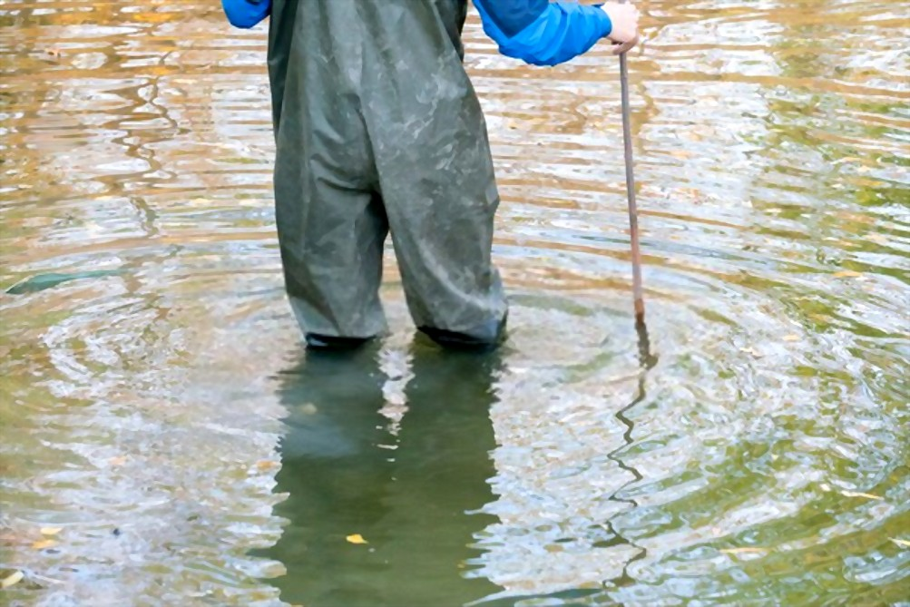 best wading staff for fly fishing