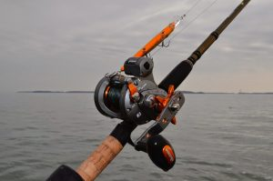 8 Best Line Counter Reels for Increased Angling Productivity