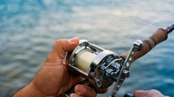 Best Salmon Fishing Reels