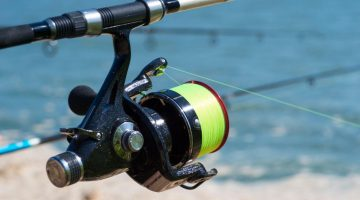 best saltwater spinning reel under 100