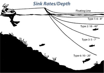 fly line sink rate