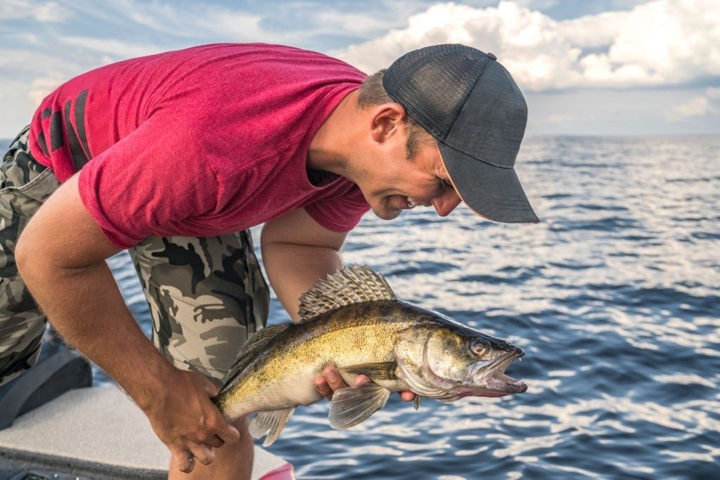 frequently asked questions about best walleye jigging rod
