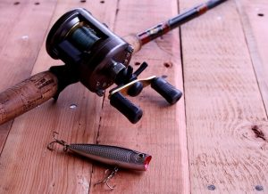 The 8 Best Musky Reels: Your Ultimate Purchasing Guide