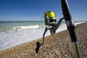 The 12 Best Surf Fishing Reels and Purchasing Guide For YOU!